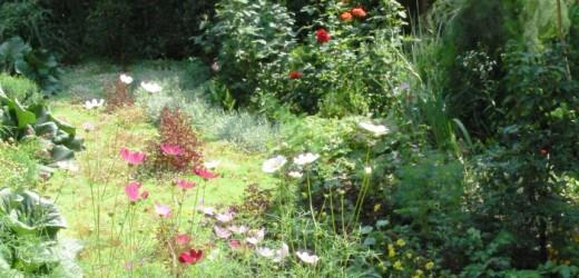 Экскурсия «Хәтер бакчасы – Сад памяти»