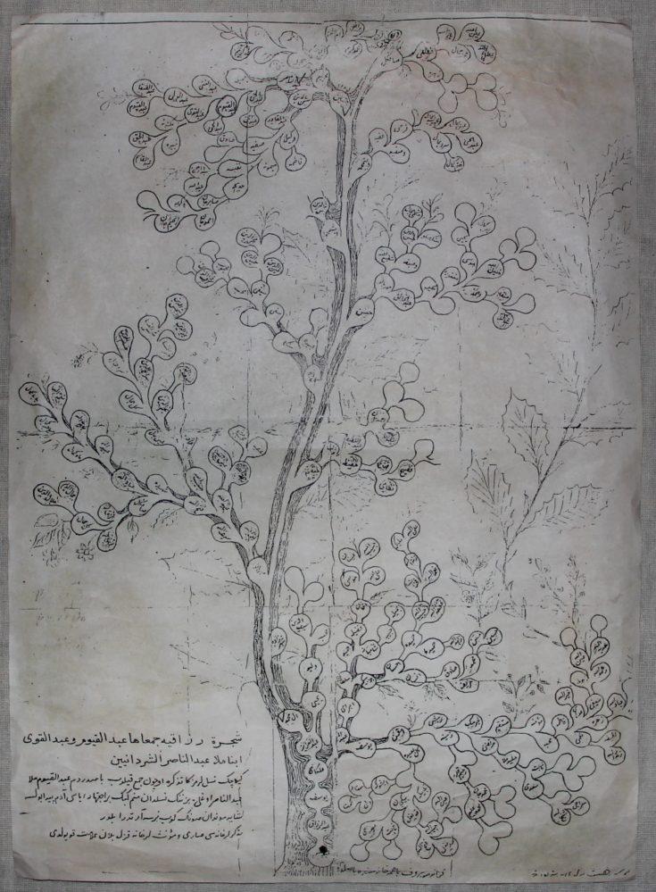 Родословная-Шәҗәрә Каюма Насыри по отцовской линии, составленная самим ученым